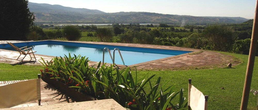 the swimming pool in the vineyard